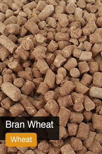 Product Wheat Bran Yellowrock