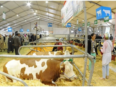 Salon International de l'agriculture SIAM - Yellowrock